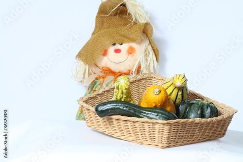 Ornamental Gourd/Squash in Basket