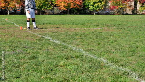 Umpire on sports field