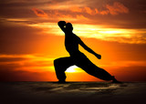 Martial Arts Fitness at Sunset