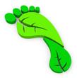 Der grüne Fußabdruck