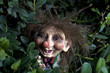 the trolls - 36342548