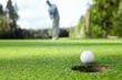 Leinwanddruck Bild - Playing golf