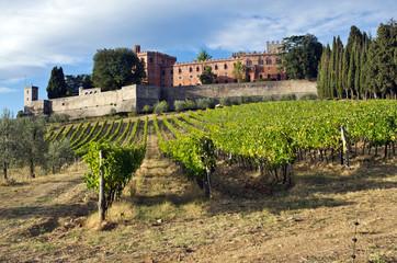 Toscana, Chianti: vigne e  Castello di Brolio