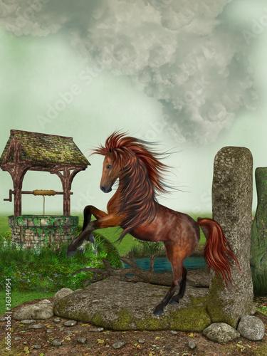 Horse - 36344954