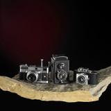 nostalgic cameras on stone surface poster