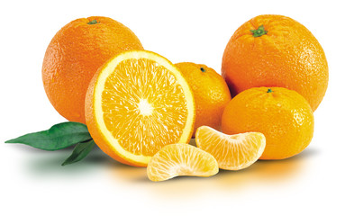 Bunch of Fresh Oranges