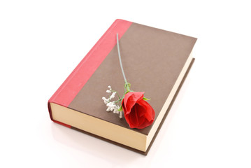 Rose on Brown and Red Hard Cover Book