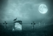 Gravestones in moonlight - 36383562