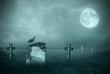 Leinwanddruck Bild - Gravestones in moonlight