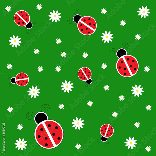 Poster Lieveheersbeestjes Ladybugs on Grass