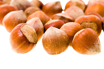 hazelnuts (isolated)