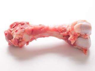 close up of a single pork bone on white