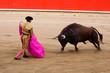 Leinwanddruck Bild - Bullfighting