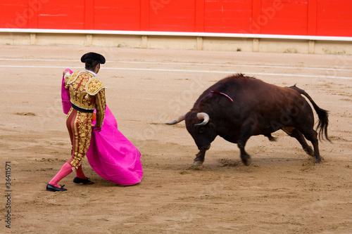 In de dag Stierenvechten Bullfighting