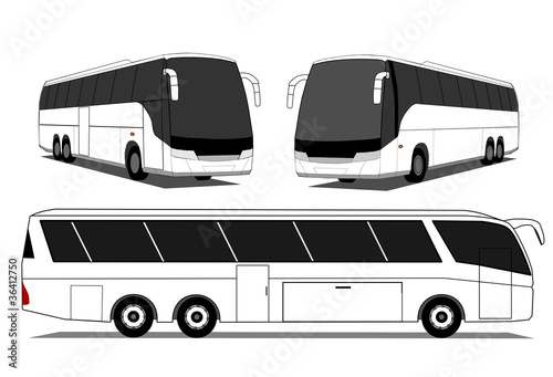 Coach buses vector