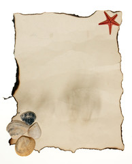 Old paper tag with seashell