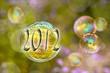 2012, bulles et nature