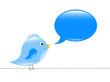 kleiner blauer vogel spricht