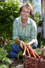 Woman harvesting carrots