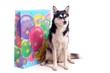 junger Hund Husky und riesige Geschenktasche