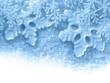 Fond étoiles de neige et poudreuse