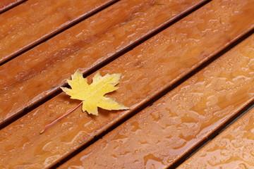Ahornblatt liegt auf nassem Holztisch
