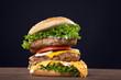 Hamburger frisch serviert, Mega doppelt, close up