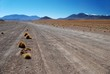 Desert of Bolivia