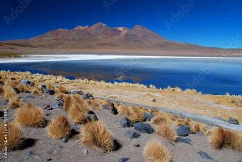 Desert with Lake