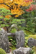 Zen rock garden in autumn with colored maple trees in Kyoto