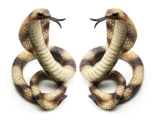 Rubber Cobras
