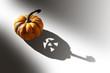 Petite citrouille dans la lumière - l'ombre d'Halloween