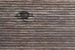 Holzhintergrund