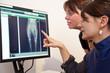 Tierärztin erklärt Röntgenbild