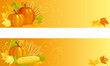 Vector banners of vegetables and leaves  on yellow background.