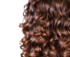 Curly Brown Hair isolated on White