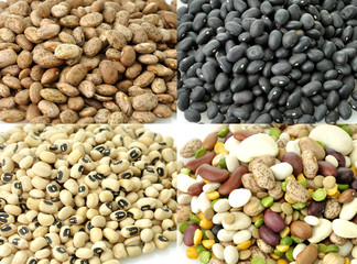 Raw Beans Collection