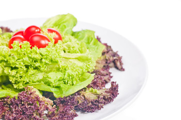 Fresh lettuce and tomato on plate