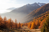 vallata alpina in autunno