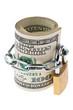 Dollar Geldscheine mit einem Schloss