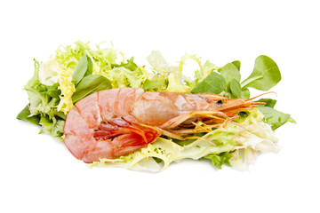 marisco fresco con lechuga aislado