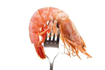 marisco fresco en el tenedor
