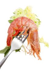 marisco fresco en el tenedor y lechuga