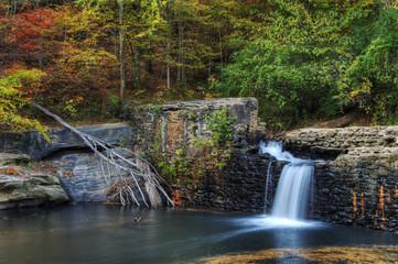 Broken Dam in the Woods