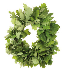 Oak wreath