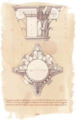 Chapiter - hand draw sketch composite architectural order
