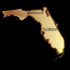 Gold florida state map