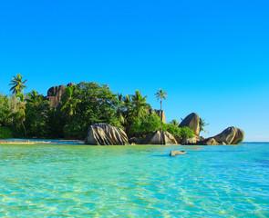 Peace Paradise Summer