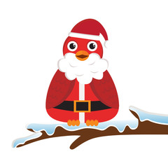 Bird wearing Santa costume
