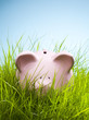 Piggy bank in grass